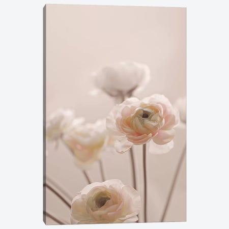 Rose Flowers I Canvas Print #GEL247} by Monika Strigel Canvas Artwork