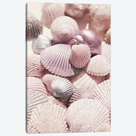 Shells And Glitter Canvas Print #GEL269} by Monika Strigel Art Print