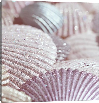 Shells And Glitter II Pink Square Canvas Art Print