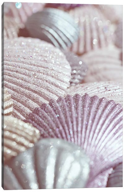 Shells And Glitter II Pink Canvas Art Print