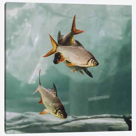 The Swarm I Square Canvas Print #GEL289} by Monika Strigel Canvas Art Print