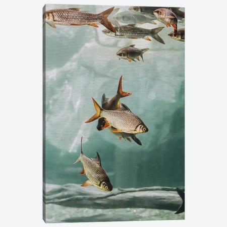 The Swarm I Canvas Print #GEL290} by Monika Strigel Canvas Art