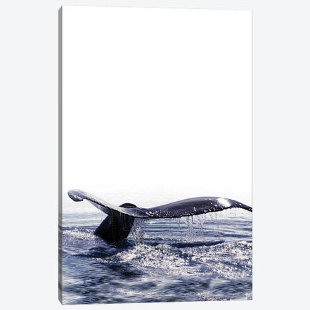 Whale Song I Iceland Canvas Print #GEL303} by Monika Strigel Canvas Wall Art