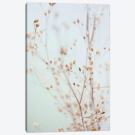 Wildflowers Canvas Print #GEL321} by Monika Strigel Canvas Artwork