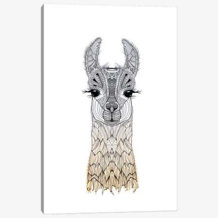 Lama Cria  Canvas Print #GEL41} by Monika Strigel Canvas Art Print