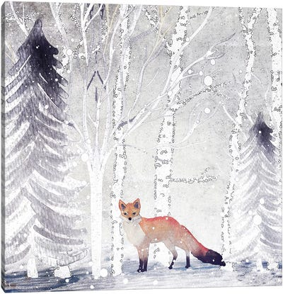 Mr. Winterfox Canvas Art Print