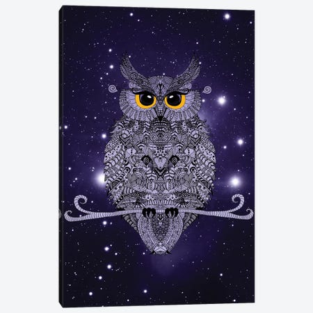 Night Owl Canvas Print #GEL47} by Monika Strigel Canvas Art