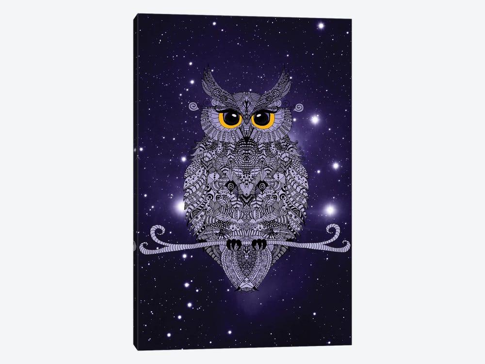 Night Owl by Monika Strigel 1-piece Canvas Art