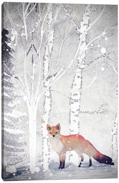 Mr. Winterfox II Canvas Art Print