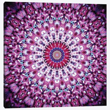 Arabesque II Canvas Print #GEL9} by Monika Strigel Canvas Print