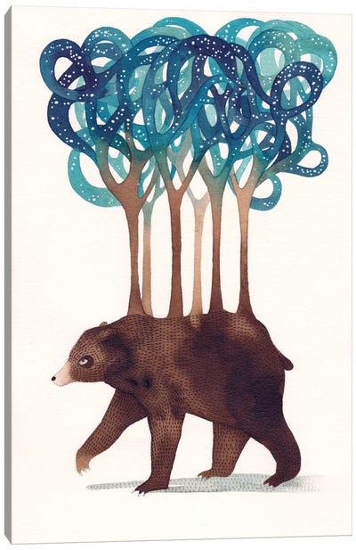 Constellation Bear Canvas Art Print