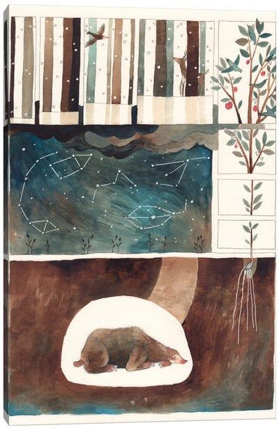 Constellations Canvas Print #GEM5