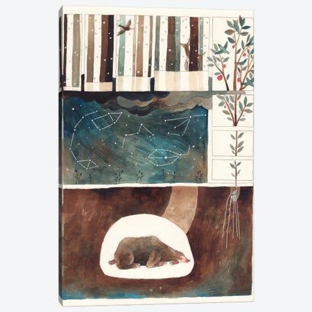 Constellations Canvas Print #GEM5} by Gemma Capdevila Canvas Print