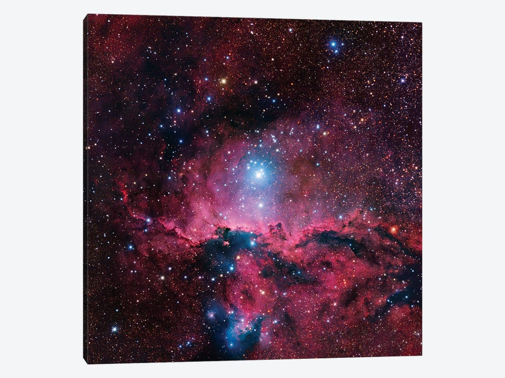 Star Forming Region In Ara (NGC 6188) II 1-piece Canvas Art