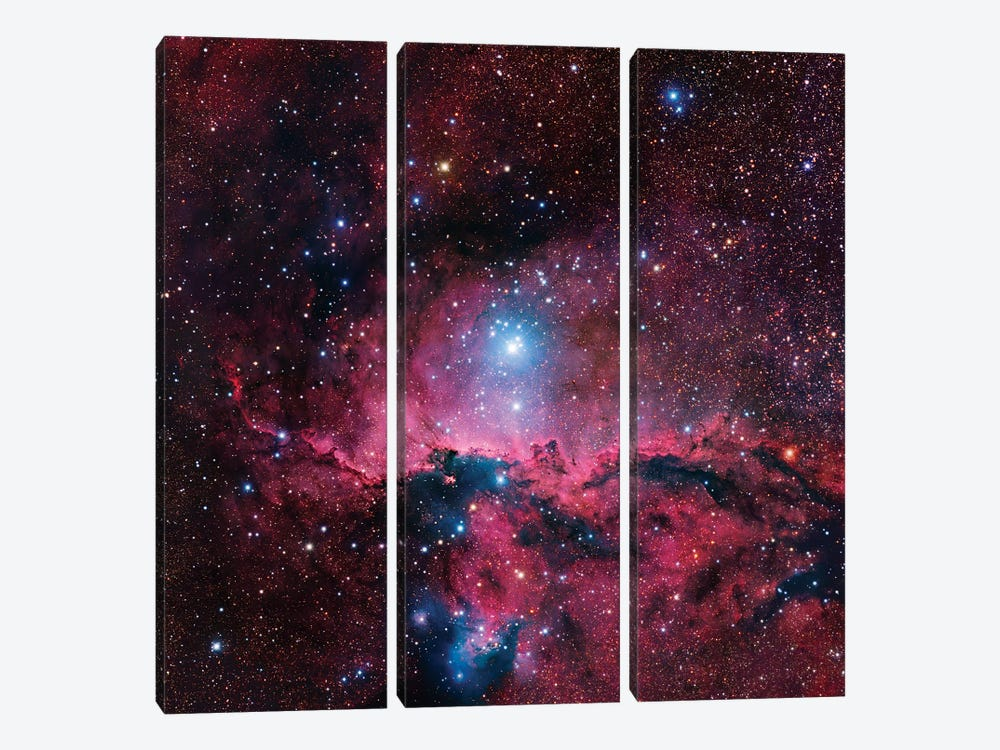 Star Forming Region In Ara (NGC 6188) II 3-piece Canvas Artwork