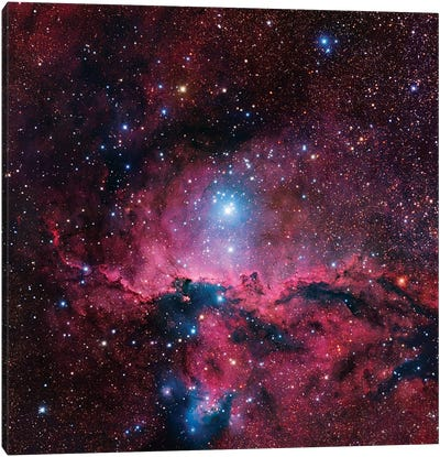 Star Forming Region In Ara (NGC 6188) II Canvas Art Print