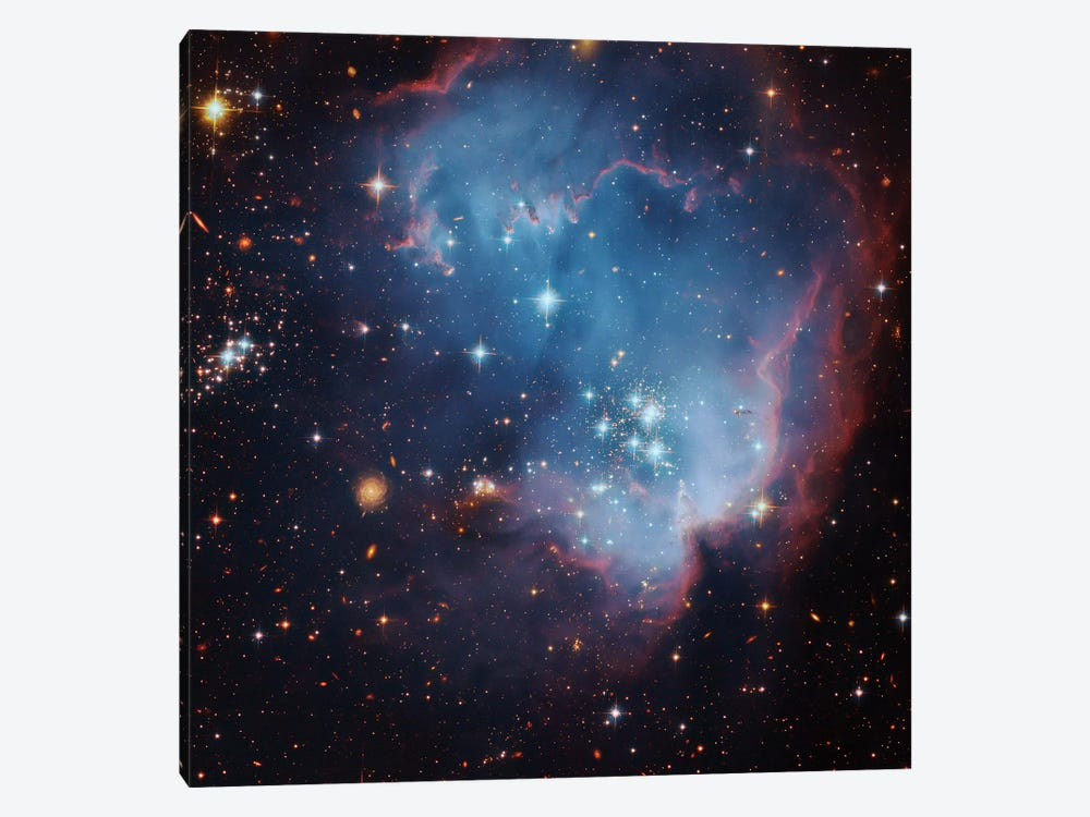 Star Forming Region In The Small Magellanic Cloud (NGC 602) by Robert Gendler 1-piece Canvas Art Print