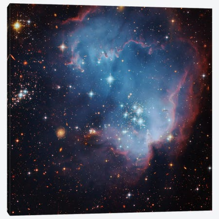 Star Forming Region In The Small Magellanic Cloud (NGC 602) Canvas Print #GEN101} by Robert Gendler Canvas Print