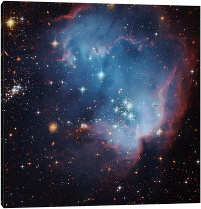 Star Forming Region In The Small Magellanic Cloud (NGC 602) Canvas Art Print
