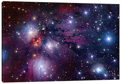 Stellar Nursery In Monoceros (NGC 2170) Canvas Art Print