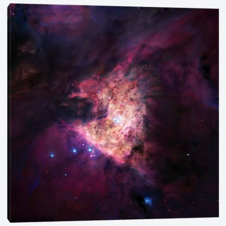 The Center Of The Orion Nebula (The Trapezium Cluster) Mosaic Canvas Print #GEN106} by Robert Gendler Canvas Wall Art