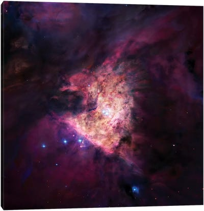 The Center Of The Orion Nebula (The Trapezium Cluster) Mosaic Canvas Art Print
