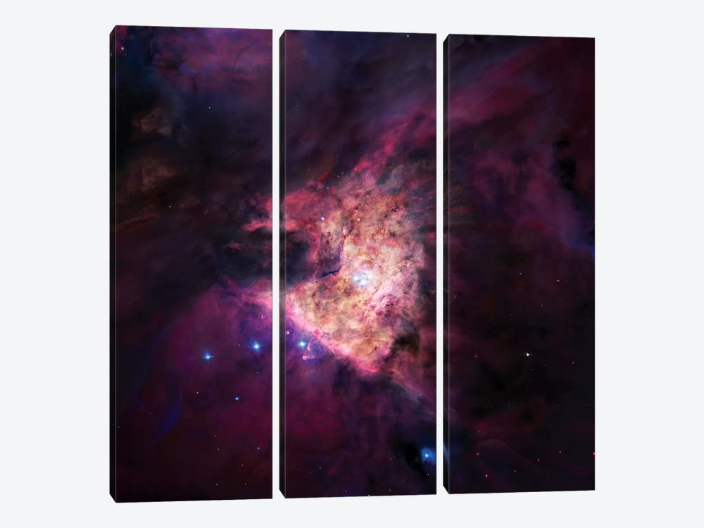 The Center Of The Orion Nebula (The Trapezium Cluster) Mosaic by Robert Gendler 3-piece Canvas Artwork