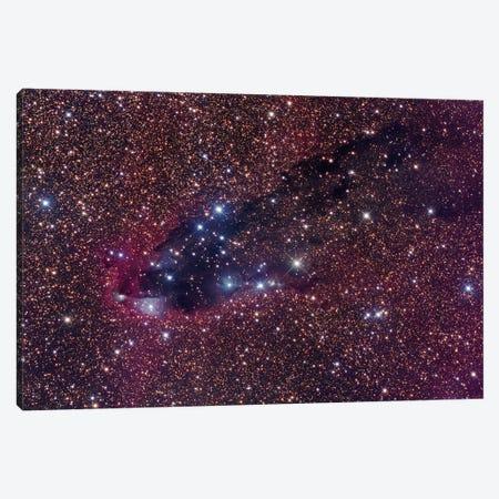 The Dark Tower, Cometary Globule In Scorpius Canvas Print #GEN107} by Robert Gendler Canvas Art