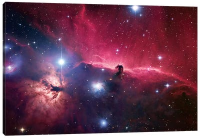 The Horsehead Nebula Region Canvas Art Print