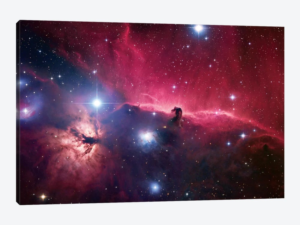 The Horsehead Nebula Region by Robert Gendler 1-piece Canvas Art