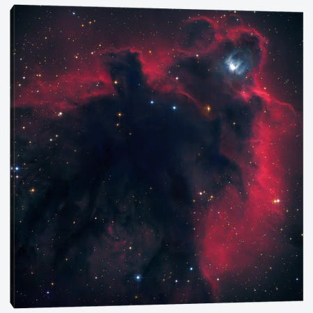 Cometary Globule In Orion (LDN 1622) Canvas Print #GEN10} by Robert Gendler Canvas Artwork