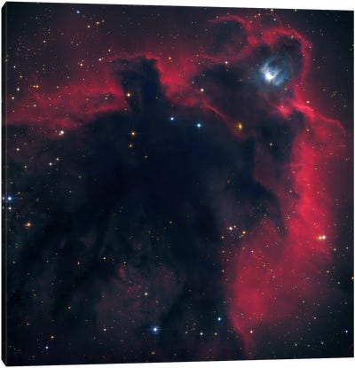 Cometary Globule In Orion (LDN 1622) Canvas Art Print