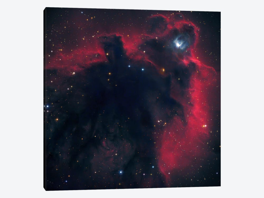 Cometary Globule In Orion (LDN 1622) by Robert Gendler 1-piece Canvas Print
