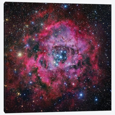 The Rosette Nebula In Monoceros Mosaic Canvas Print #GEN112} by Robert Gendler Canvas Artwork