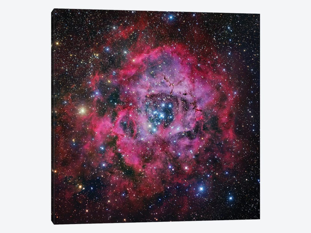 The Rosette Nebula In Monoceros Mosaic by Robert Gendler 1-piece Art Print
