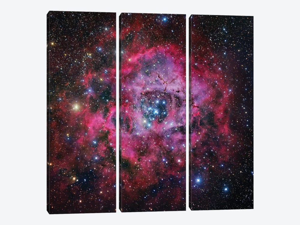 The Rosette Nebula In Monoceros Mosaic by Robert Gendler 3-piece Canvas Print