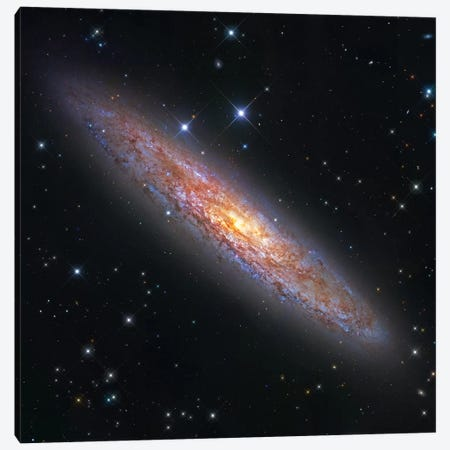 The Sculptor Galaxy (NGC 253) II Canvas Print #GEN115} by Robert Gendler Art Print