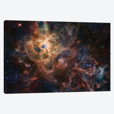 The Tarantula Nebula Composite Image (NGC 2070) Canvas Print #GEN118} by Robert Gendler Canvas Wall Art
