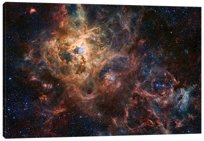 The Tarantula Nebula Composite Image (NGC 2070) Canvas Art Print