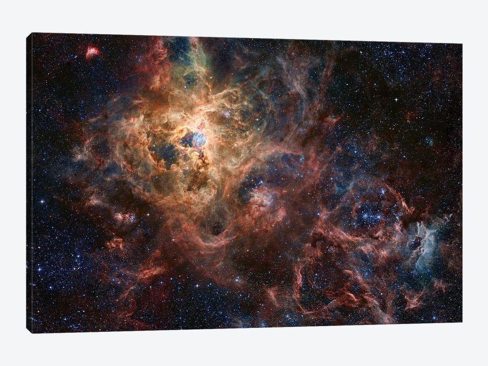 The Tarantula Nebula Composite Image (NGC 2070) by Robert Gendler 1-piece Canvas Art Print