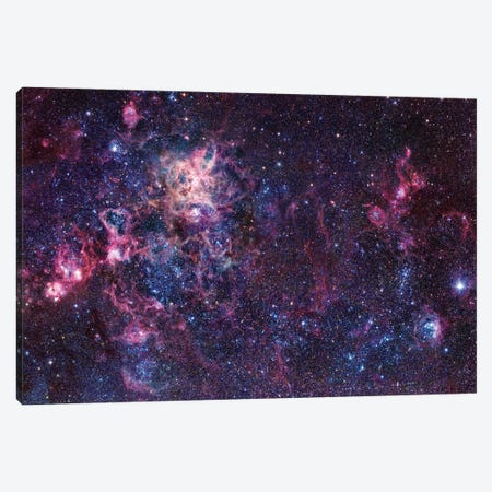 The Tarantula Nebula Mosaic (NGC 2070) Canvas Print #GEN119} by Robert Gendler Canvas Wall Art