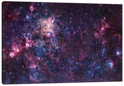 The Tarantula Nebula Mosaic (NGC 2070) Canvas Art Print