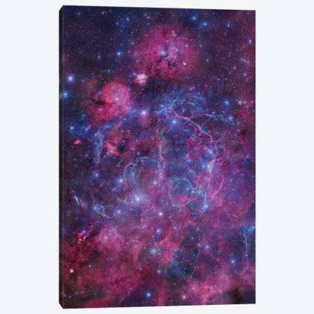 Vela Supernova Remnant Mosaic I Canvas Print #GEN124} by Robert Gendler Canvas Art