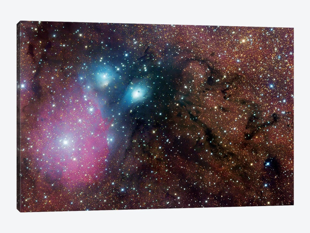 Complex Nebula In Sagittarius (NGC 6589) by Robert Gendler 1-piece Canvas Art Print