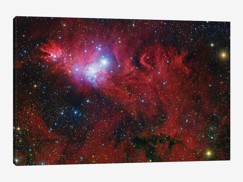 Cone Nebula Mosaic by Robert Gendler 1-piece Canvas Art