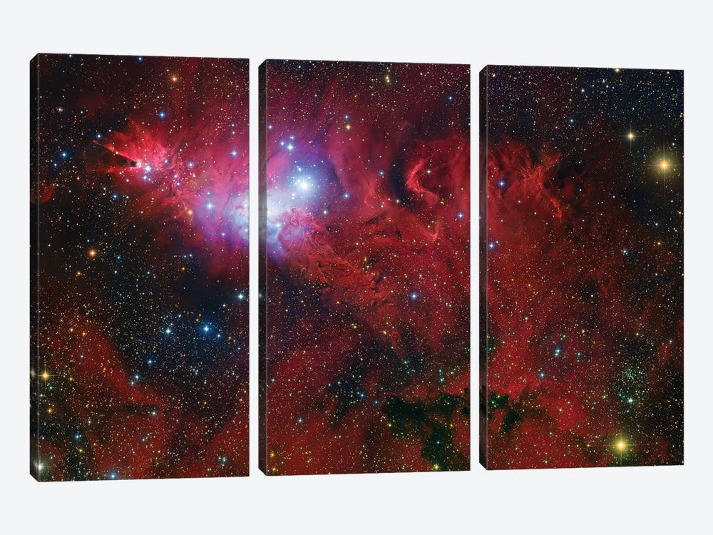 Cone Nebula Mosaic by Robert Gendler 3-piece Canvas Art