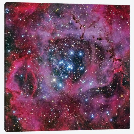 The Rosette Nebula Canvas Print #GEN151} by Robert Gendler Canvas Wall Art