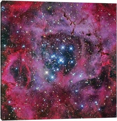 The Rosette Nebula Canvas Art Print