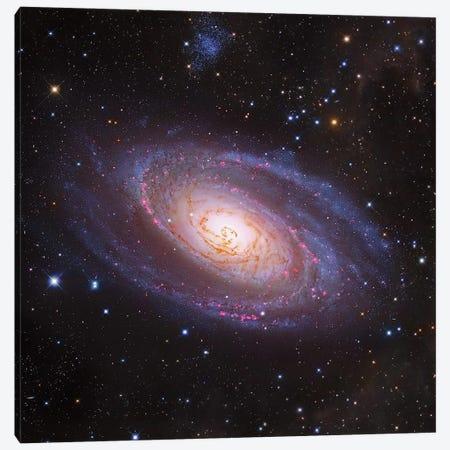 M81 Spiral Galaxy In Ursa Major III Canvas Print #GEN154} by Robert Gendler Canvas Art Print