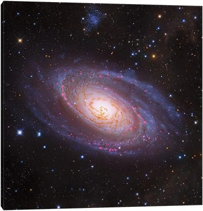 M81 Spiral Galaxy In Ursa Major III Canvas Art Print